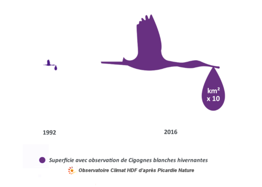 evolution-hivernage-cigognes_indicateur Observatoire Climat